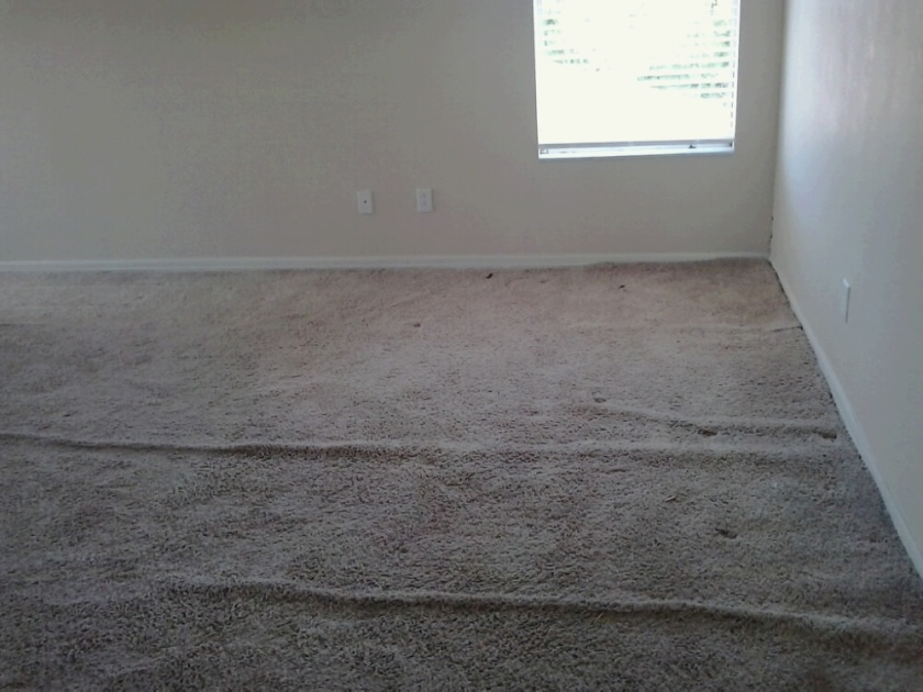 Before I stretched carpet.